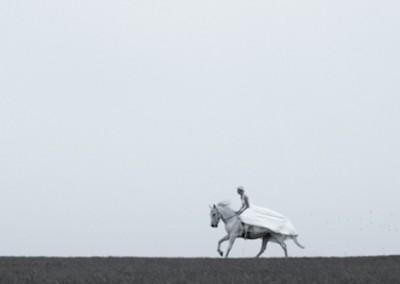 Pferd-24-2